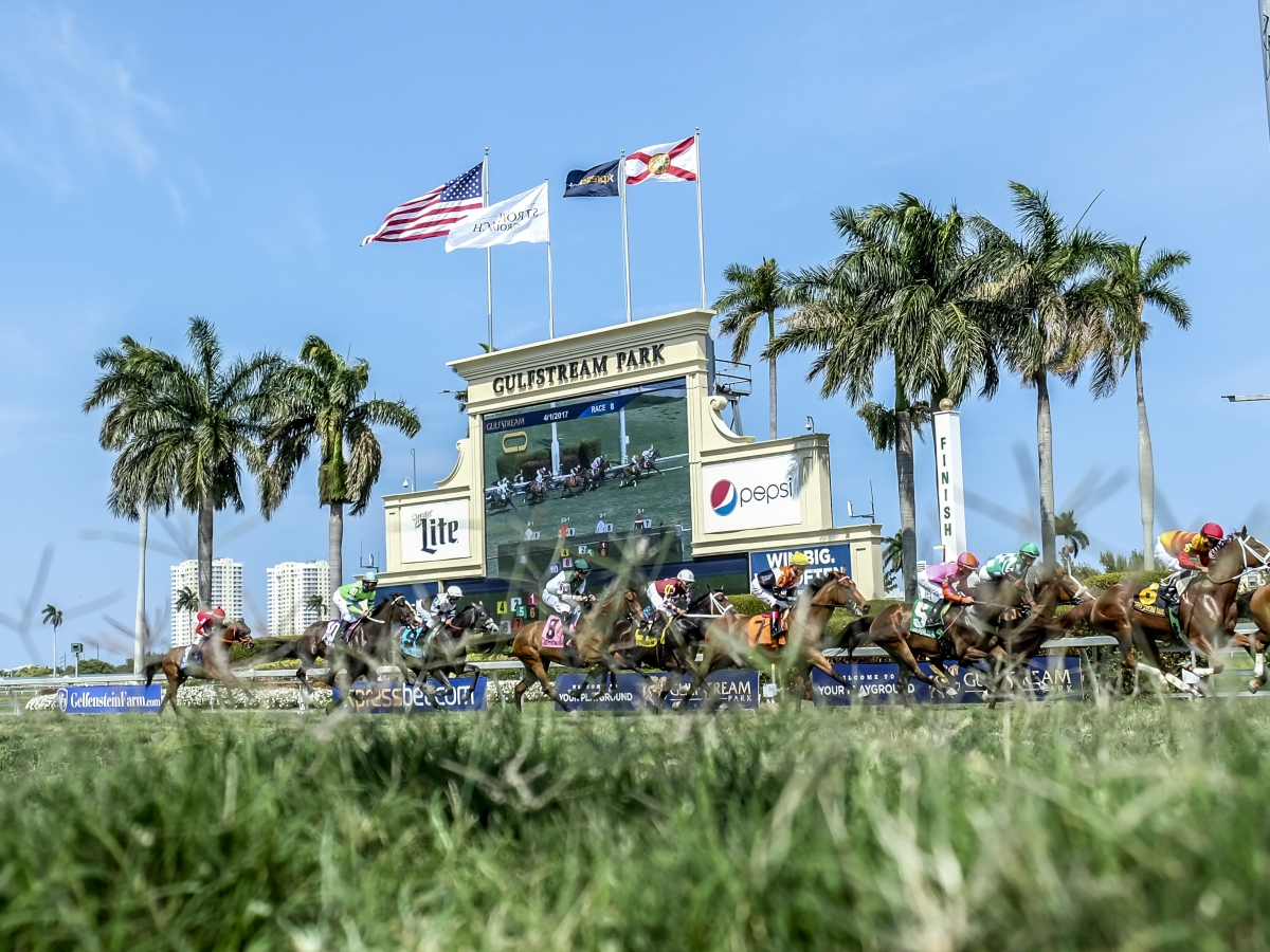 Free Thursday SmartCap Horse Racing pick for the 2nd at Gulfstream Park