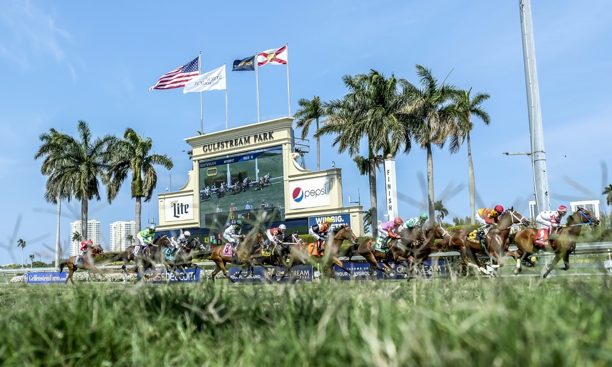 Horse Racing Thursday: Garrity picks 6 races at 5 tracks over 30 minutes - Belmont, Arlington Park, Gulfstream Park, Los Al, Churchill Downs
