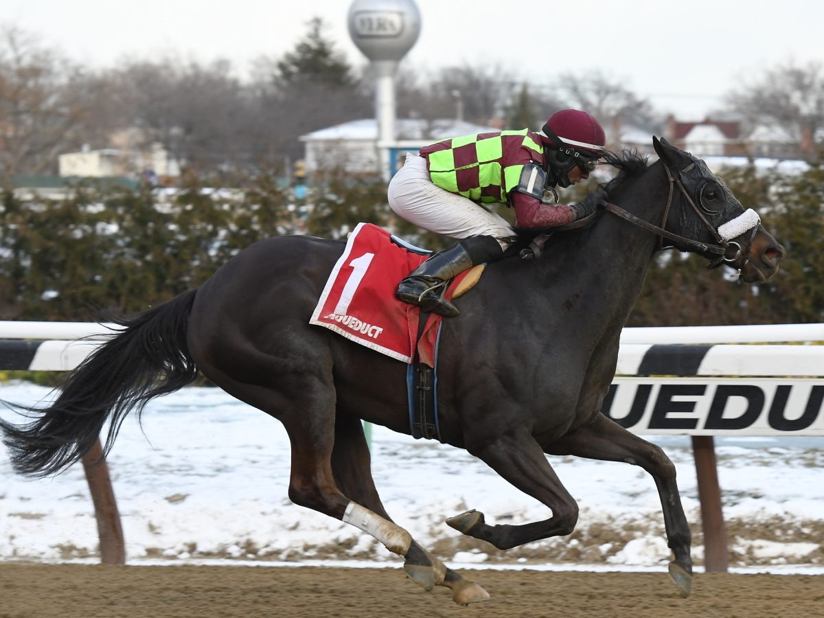 Free Thursday SmartCap Horse Racing Picks for the 1st through 6th at Aqueduct