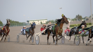 Harness Racing: Mitchell picks the Friday night cards at Yonkers and the Meadowlands