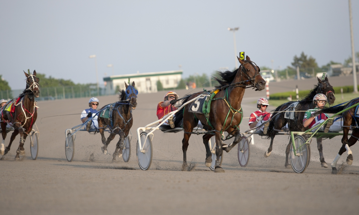Harness Racing: Don't be sulky, let Alan Mitchell help you handicap tonight at Yonkers Raceway