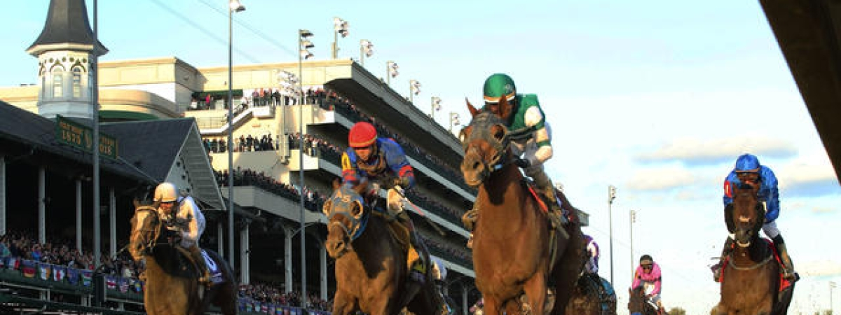 Racing last fall at Churchill Downs -- Accelerate wins the Breeders Cup Classic.