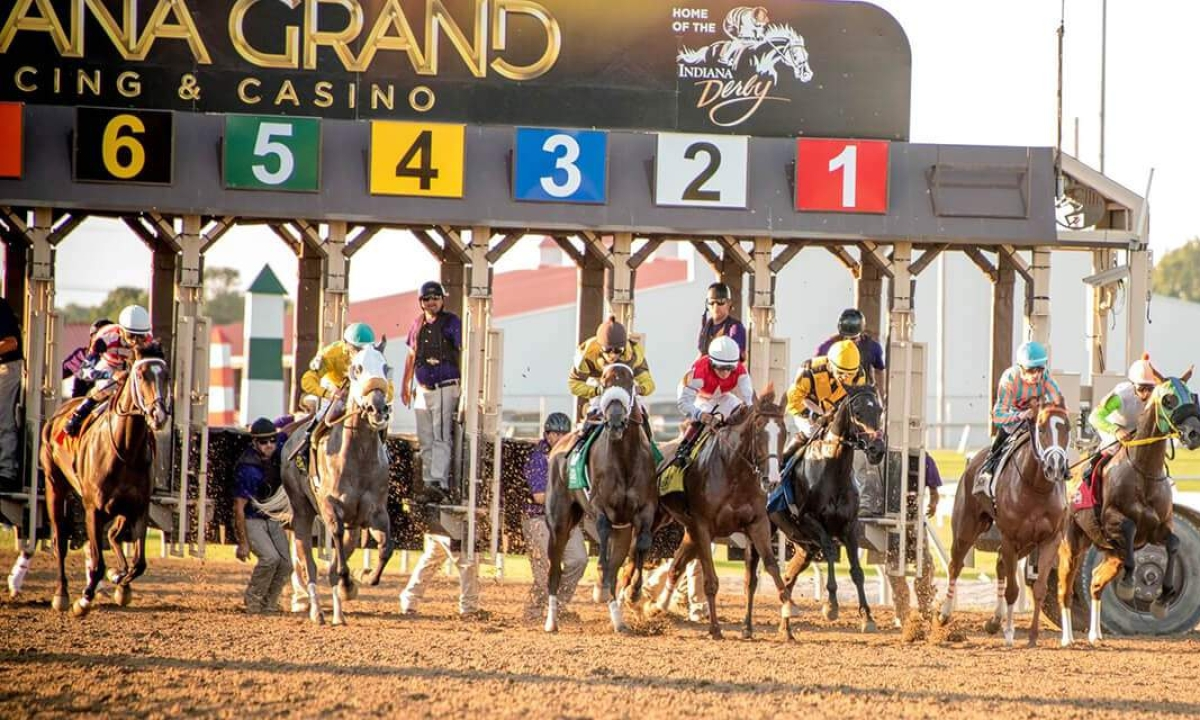 Thoroughbred Tuesday: Garrity picks today's races at Indiana Grand
