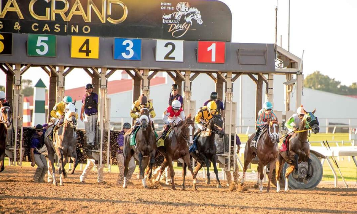 Thoroughbred Tuesday: Garrity goes back to Indiana Grand to pick the horses