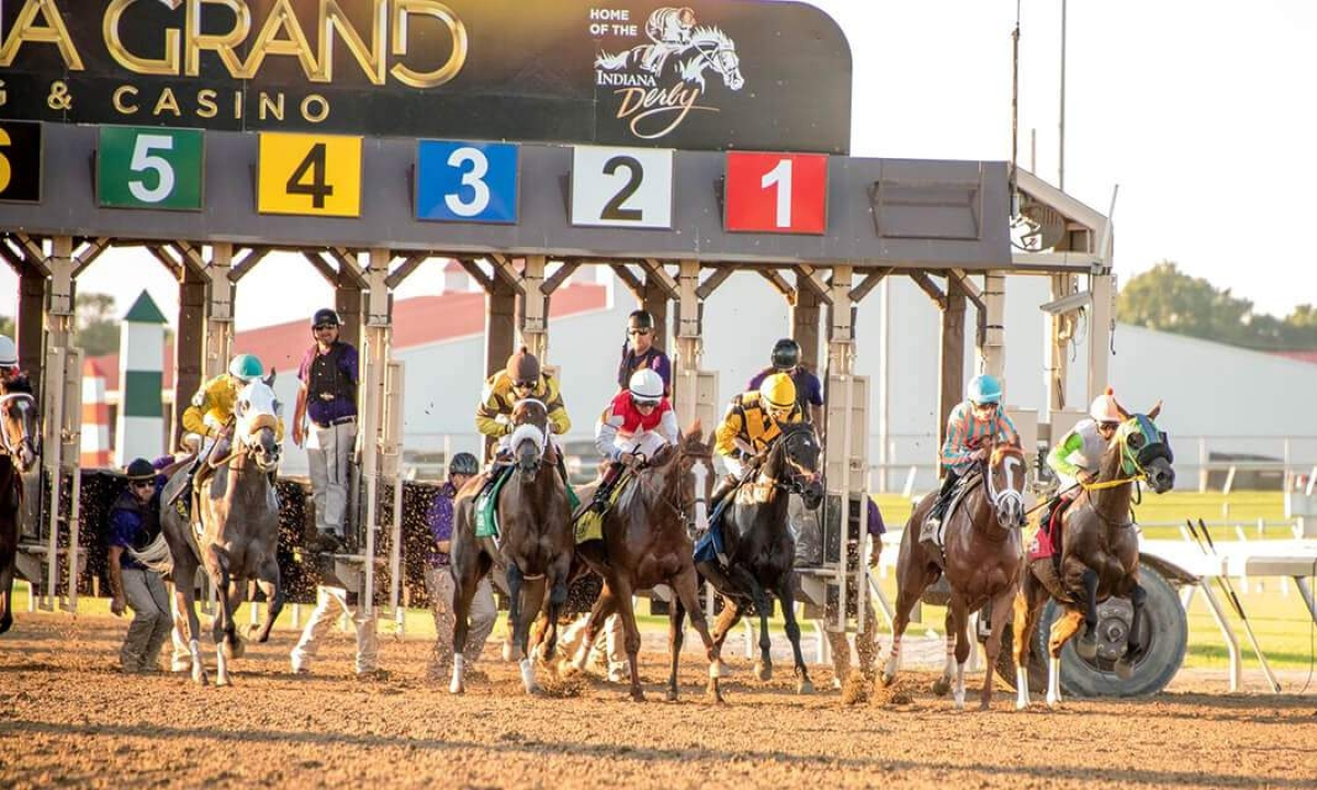 Thoroughbred Tuesday: Garrity picks the races at Indiana Grand