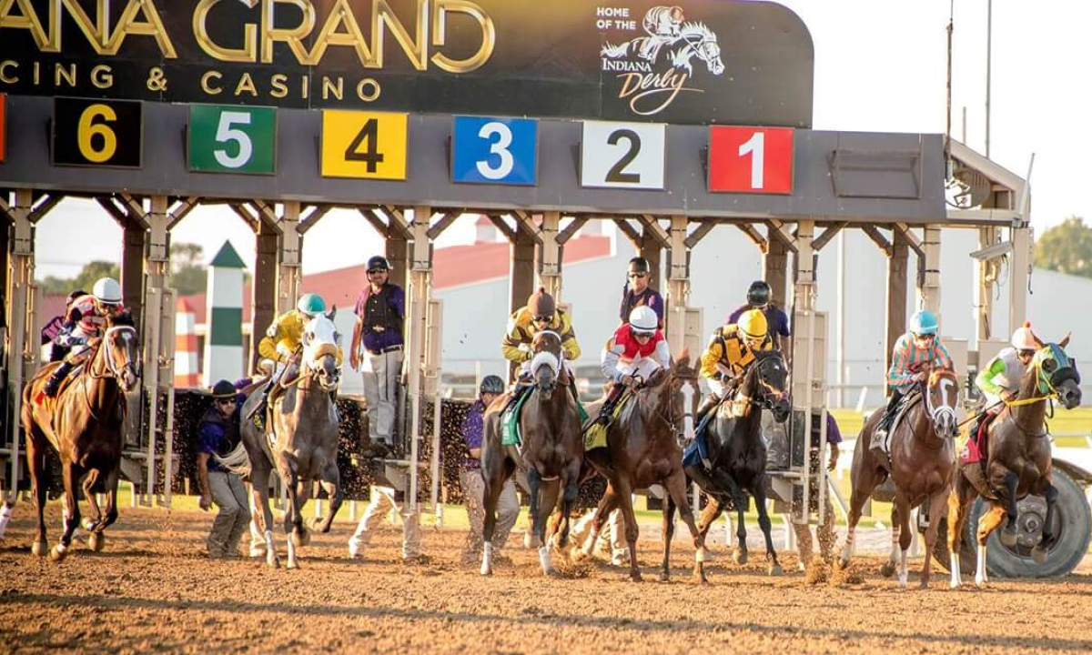 Thoroughbred Wednesday: Garrity likes what he sees at Indiana Grand and shares his picks