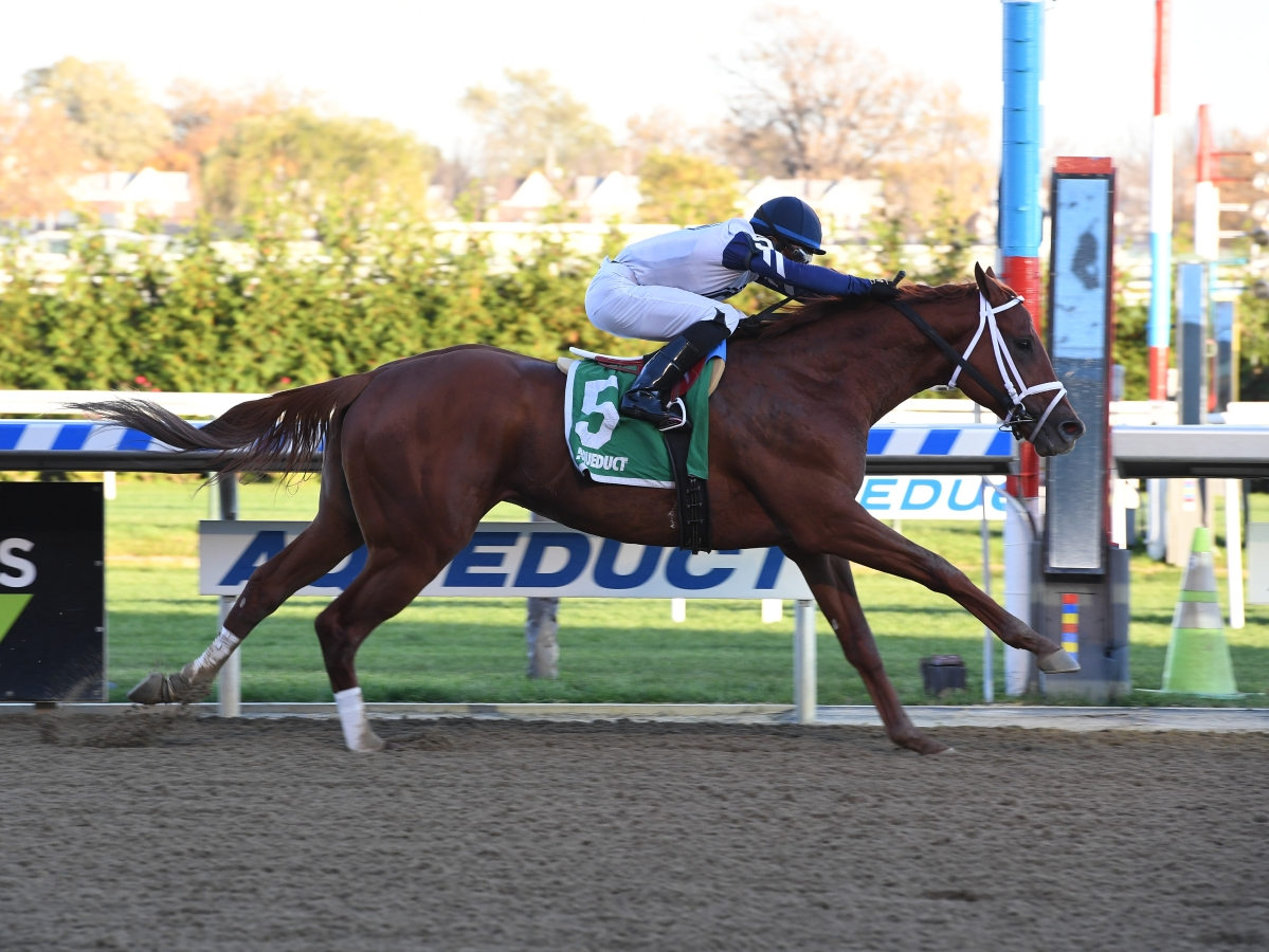 Free Friday horse racing pick using SmartCap for the fourth race at Aqueduct