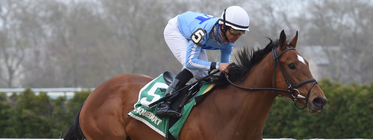 Newly Minted  won the New York Stallion Stakes at Aqueduct on Saturday. McMudder picked him.