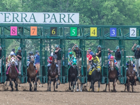Thoroughbreds Sunday: RT handicaps likely sloppy stakes races at Belmont, Monmouth, Woodbine (dry there) and . . . Belterra