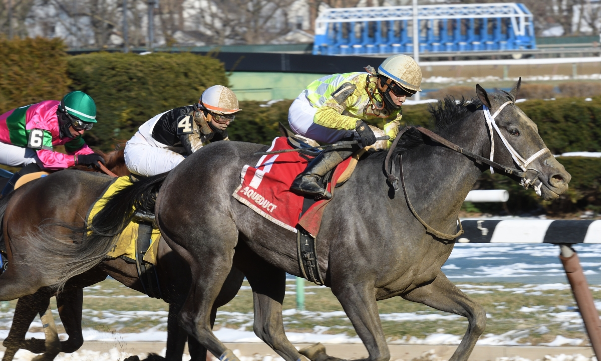 Free Sunday SmartCap Horse Racing pick for the 3rd at Aqueduct