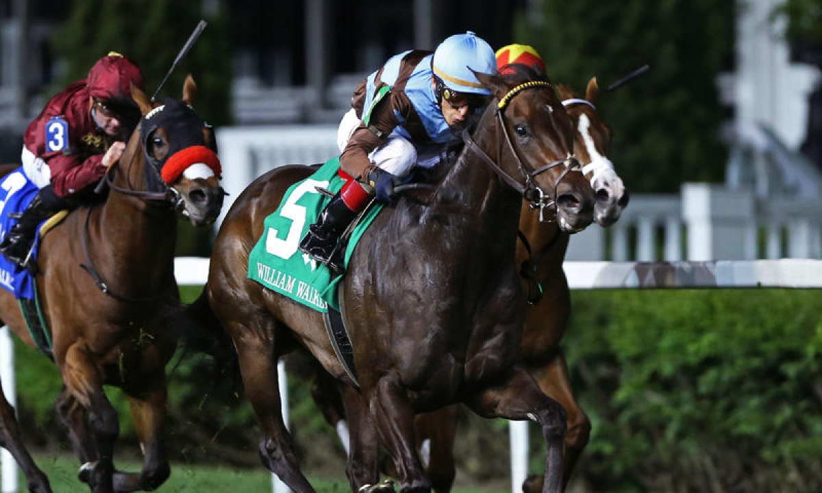 Thoroughbreds Wednesday: Also gearing up for the weekend in Kentucky, RT picks four races at Churchill Downs