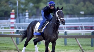 Handicapping the Preakness Part 3: Garrity looks at the 14-horse field