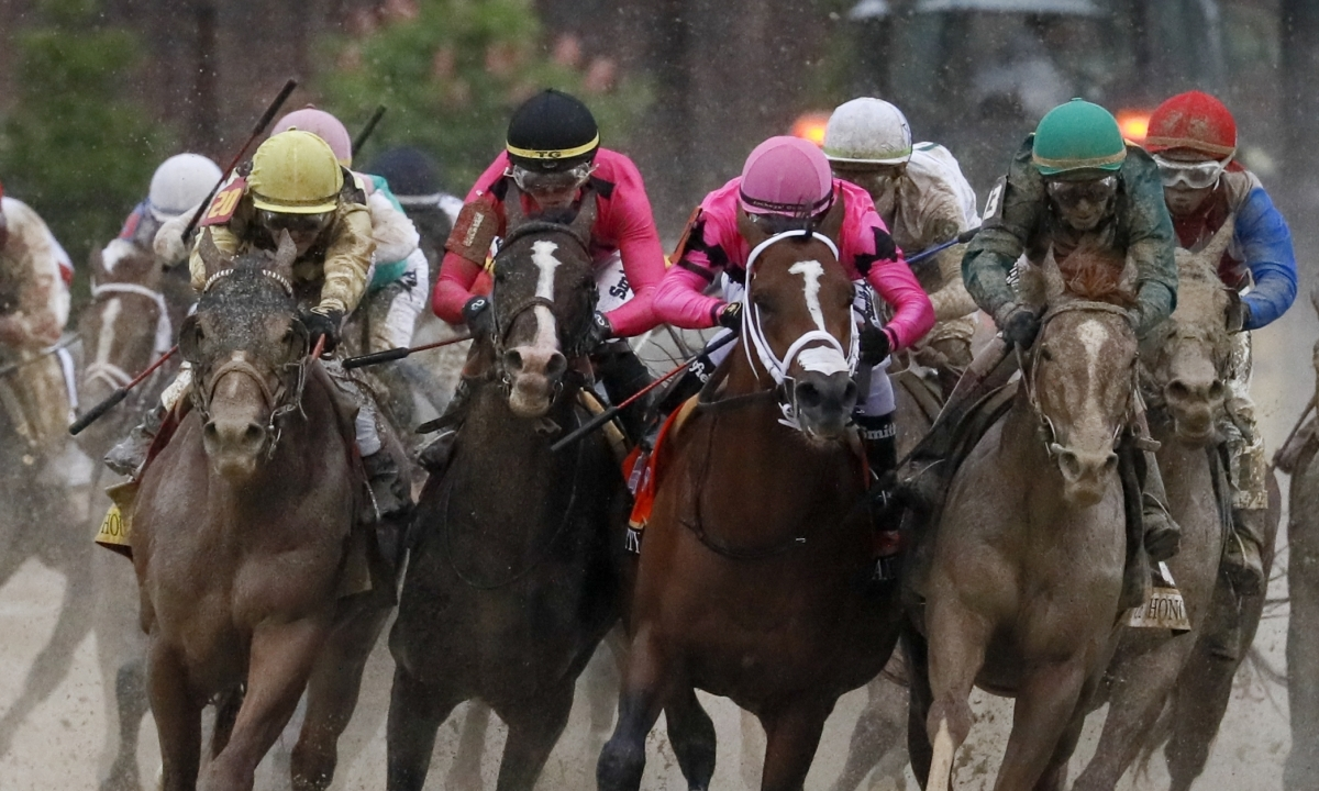 Saturday Horse Racing: RT picks three Belmont Park stakes races including the Bold Ruler with Maximum Security