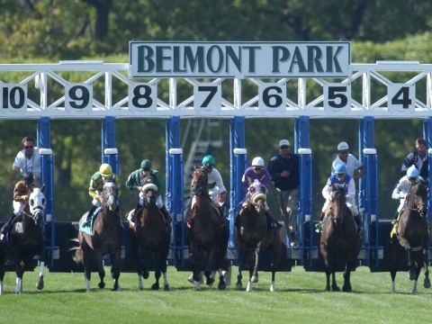 Thoroughbreds Friday - McMudder Picks Races at Belmont, Laurel, Monmouth