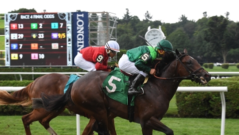 Thoroughbreds Saturday: McMudder has got Monmouth stakes