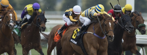 <em>Racing at Woodbine: Pink Lloyd and jockey Eurico Rosa Da Silva won the Grade 3 Jacques Cartier Stakes on Saturday, May 4. (Michael Burns Photo)</em>