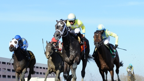 Saturday Stakes Races: Garrity picks from a loaded card at