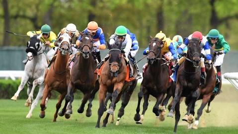 Thoroughbreds Saturday: McMudder picks races at Belmont