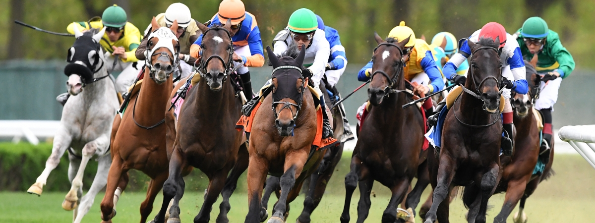 Robert Bruce leads the way in the Fort Marcy Stakes at Belmont last May. Look who's back this year.