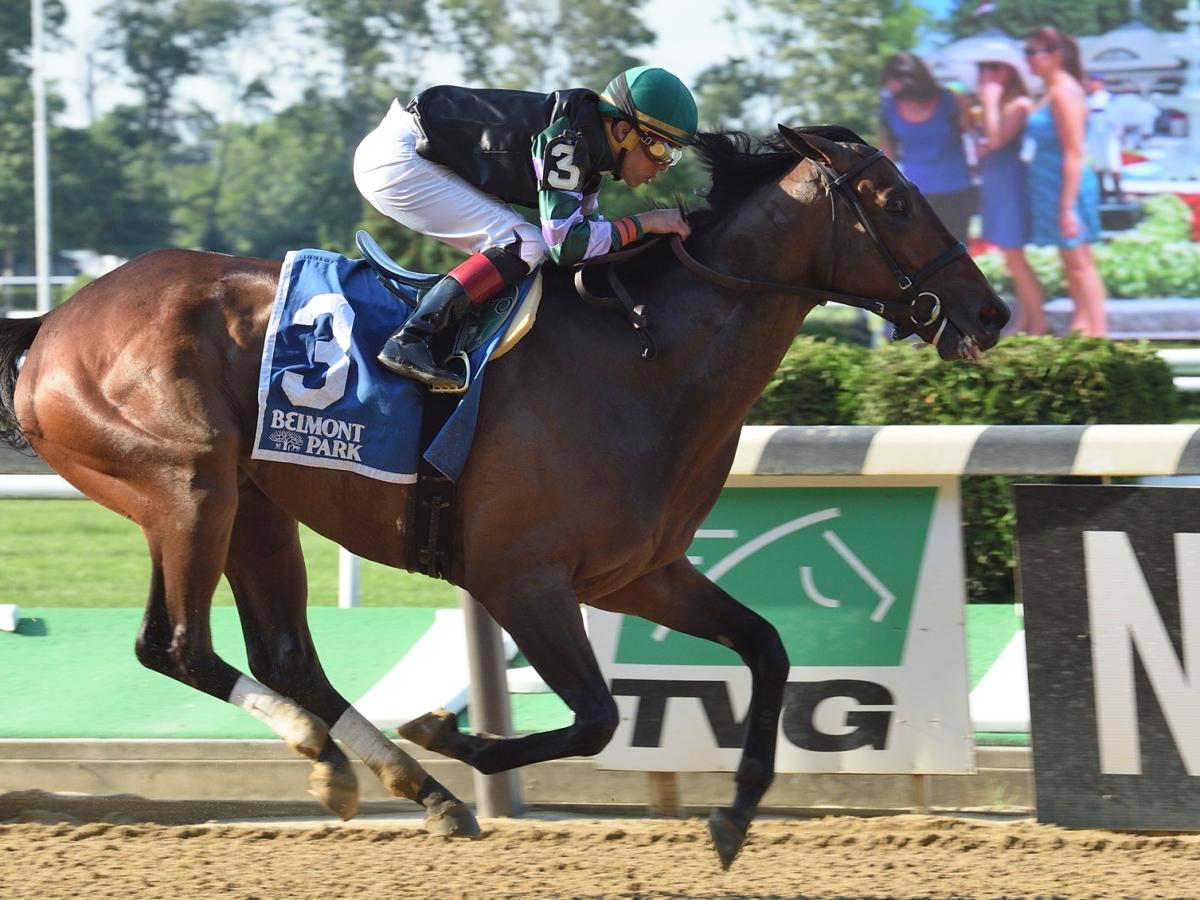 Thoroughbreds Sunday - McMudder Picks  Belmont, Laurel, Monmouth; Saginaw Stakes, Open Mind Stakes