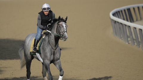 Belmont Stakes: The Associated Press picks Tacitus