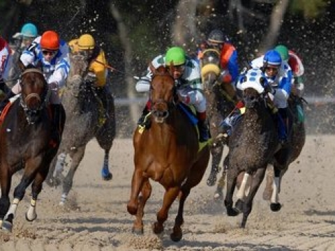 Thoroughbreds Monday: McMudder picks races at Delaware and Parx