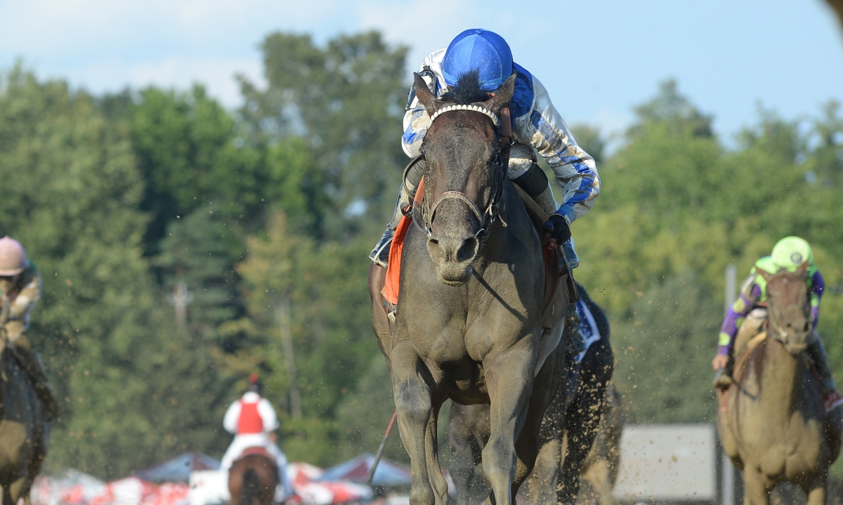 Thoroughbreds Saturday: Garrity picks stakes races at Saratoga, Arlington and Delaware