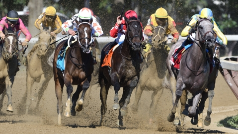 Thoroughbreds Thursday - Garrity Picks Races at Belmont, Gulfstream
