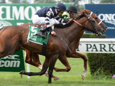 Thoroughbreds Thursday - McMudder Picks Races at Belmont Park, Laurel; Manila Stakes