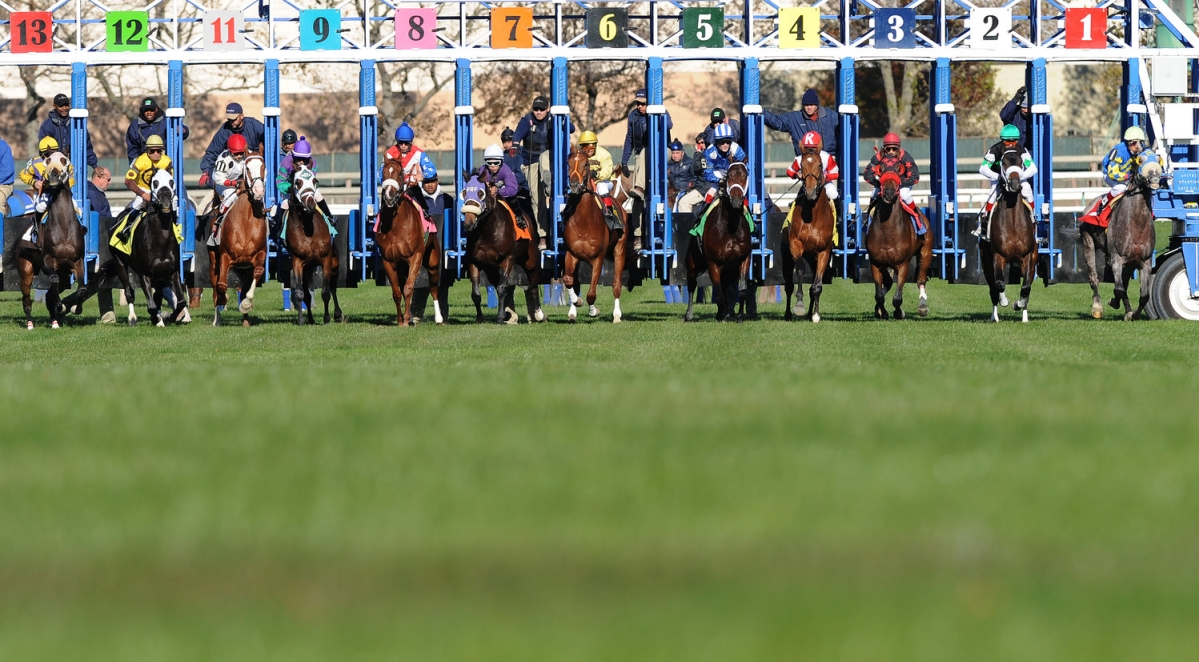 Thoroughbreds Wednesday - Garrity Picks Turf Races at Belmont Park, Delaware Park, Indiana Grand