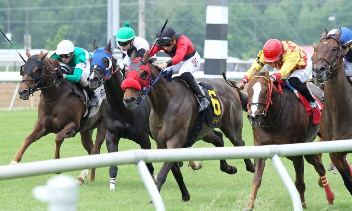 Thoroughbred Tuesday: Garrity picks the horses at Indiana Grand