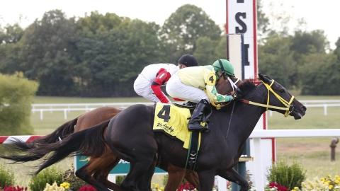 Horse Racing Thursday: Garrity picks the big grass fields at
