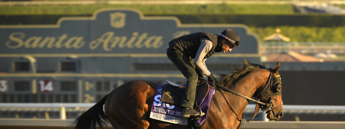 Were the many horse deaths last year at Santa Anita Park, doping related?