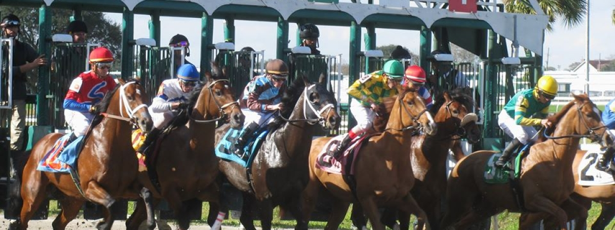 Horse Racing at the Fair Grounds Race Course & Slots in New Orleans