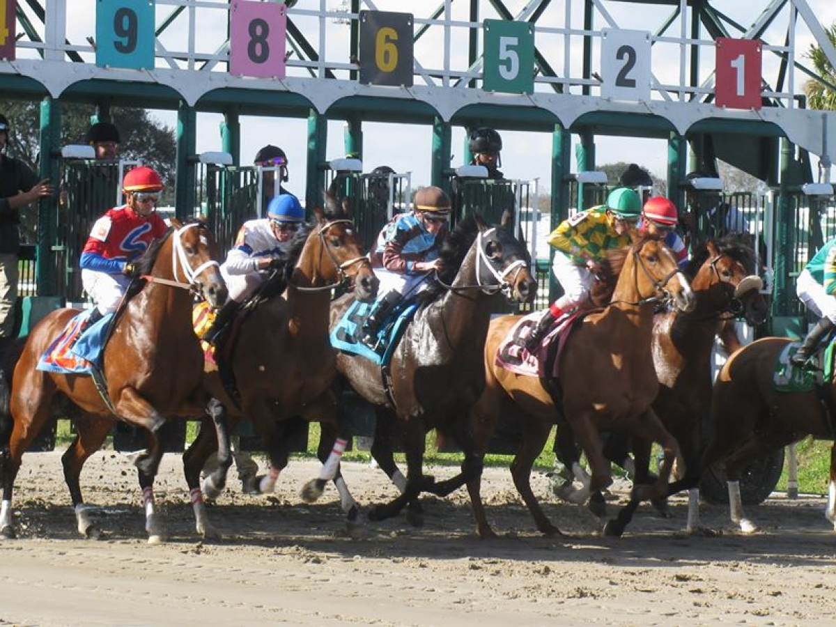 Free Friday SmartCap Horse Racing pick for the 8th race at the Fair Grounds in New Orleans