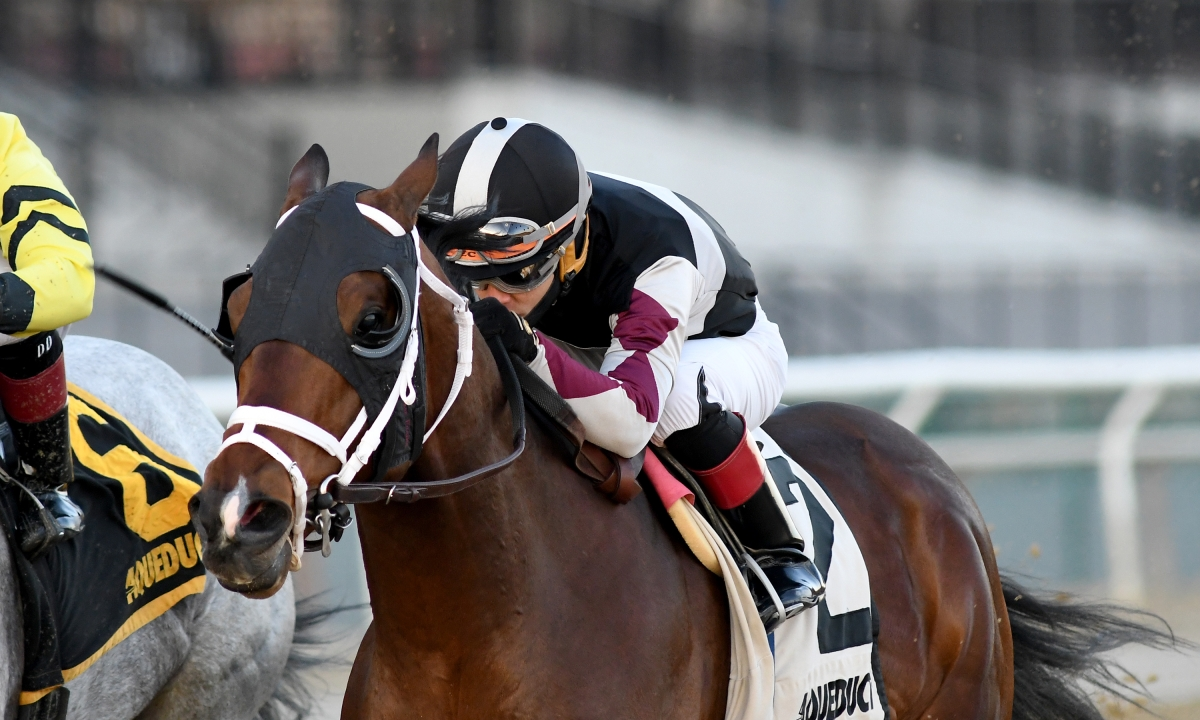 Sunday Horse Racing: RT and SmartCap pick the Fall Highweight Handicap, the 8th race at Aqueduct