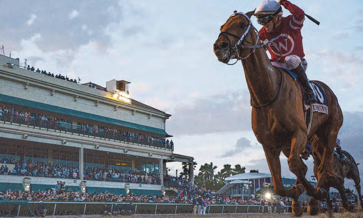 FREE Thursday Horse Racing Pick for the 9th race at Gulfstream Park