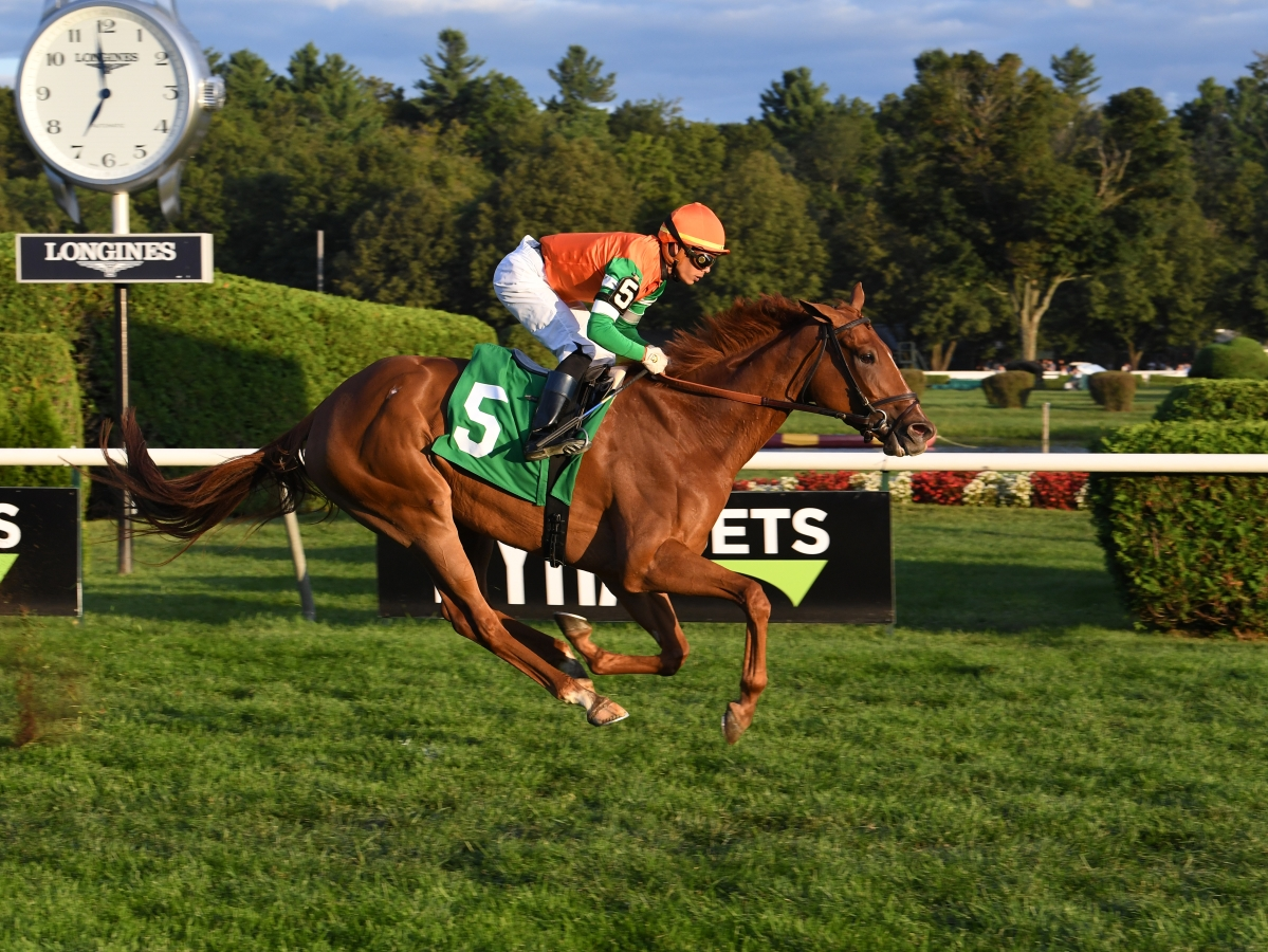 Free Wednesday SmartCap Horse Racing picks for 6th race at Gulfstream Park, a $40K claimer for four-year-olds