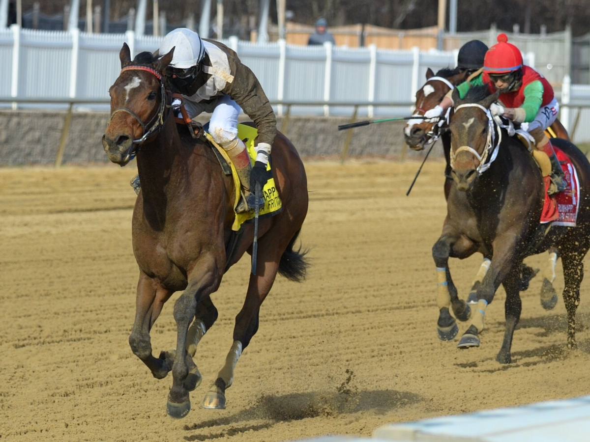 Free Friday SmartCap Horse Racing Picks for the 5th at Laurel Park