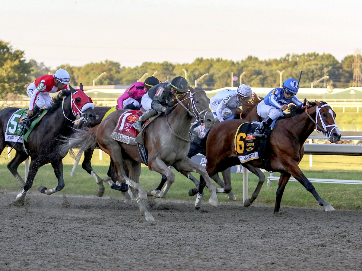 Free Monday SmartCap Horse Racing pick for the 9th at Parx Racing, a $35K optional claimer for four-year-olds and up
