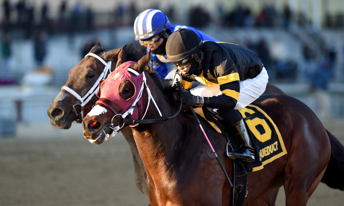 Garrity's Saturday Stakes: Kentucky Derby prep races from Aqueduct, Gulfstream and Santa Anita – and Roadster runs with the oldsters