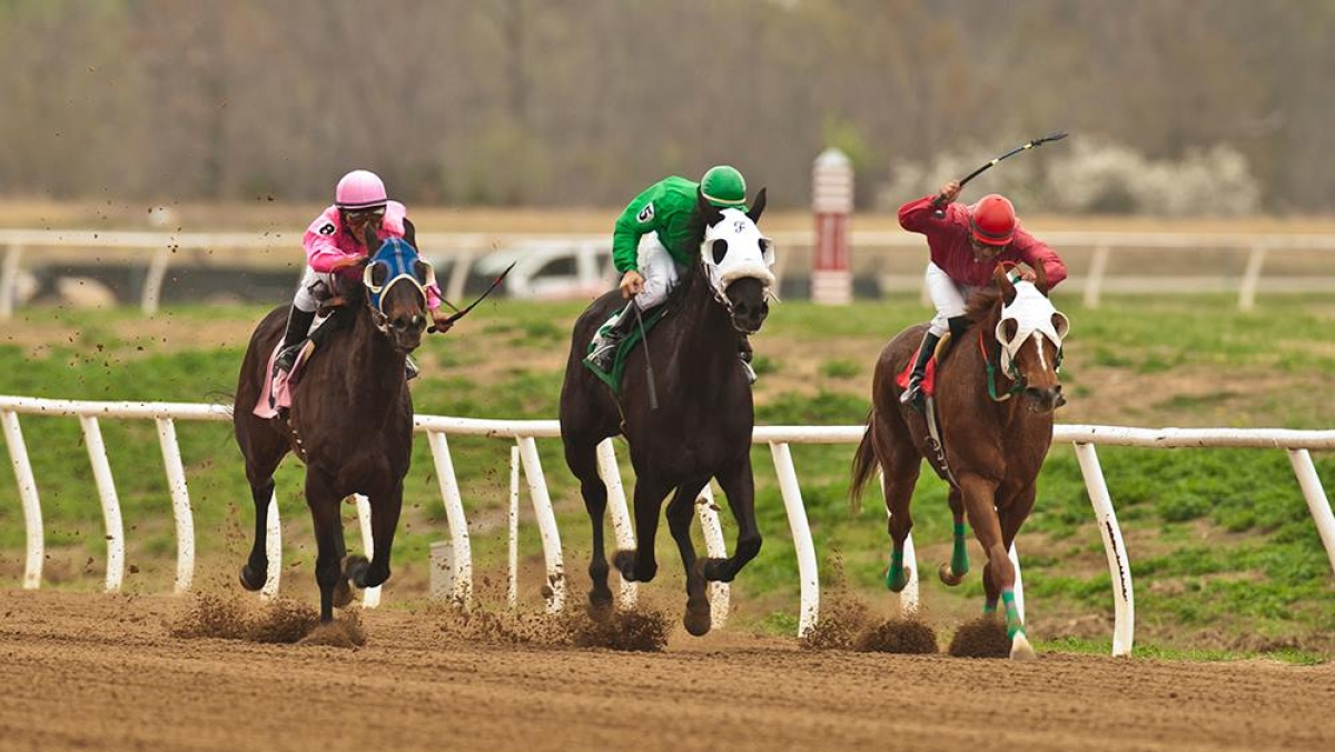 Racing at Cherokee Casino Will Rogers Downs