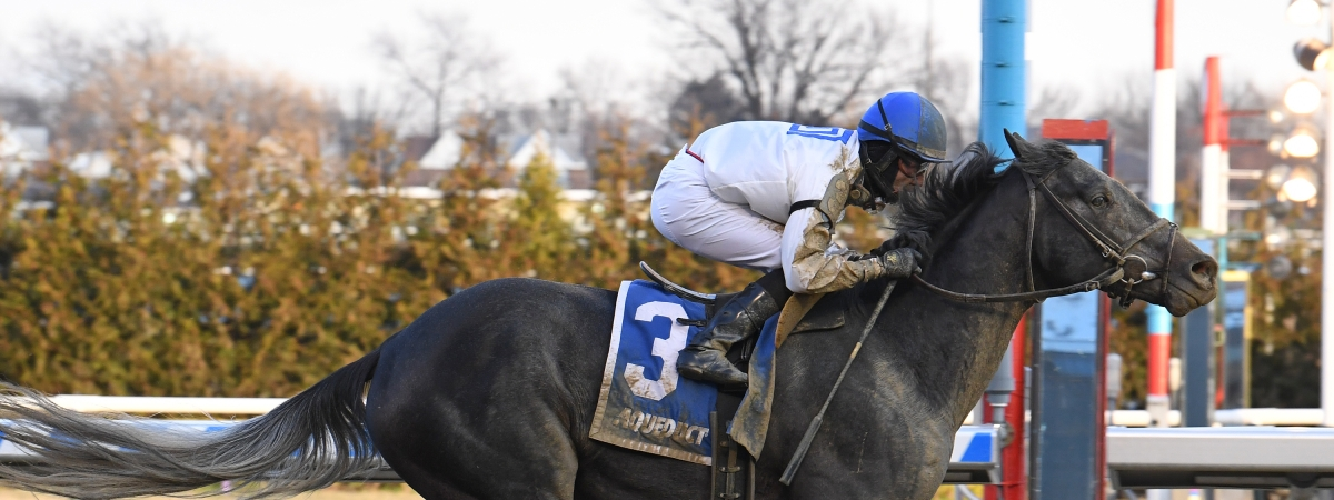 He's no fun when you're driving to the Hamptons, but Montauk Traffic, here winning the Jimmy Winkfield in February, looks good on the racetrack.
