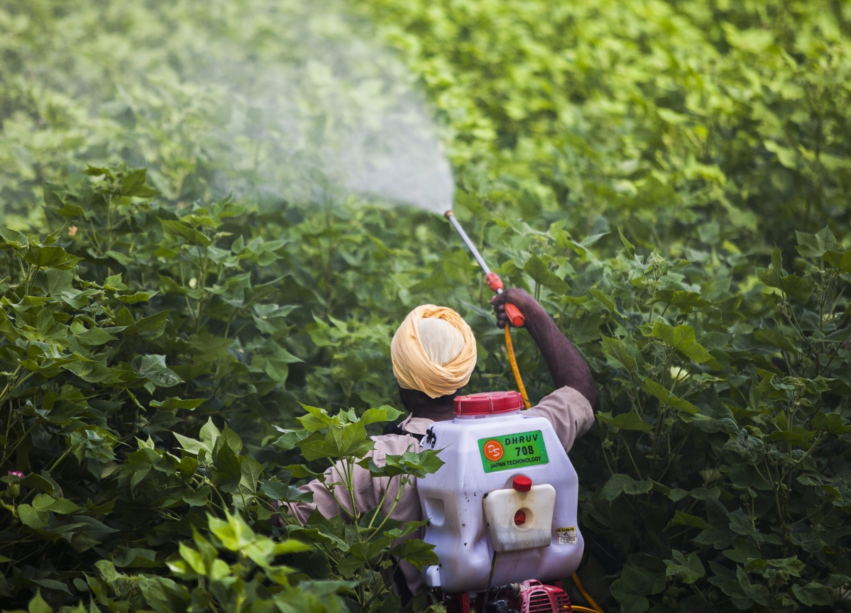 Big Agriculture Is Breeding a Worldwide Health Crisis