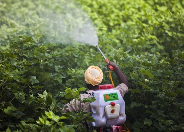 UPL Ltd : UPL Allays Investors' Fear Over European Drought, Soybean Biz