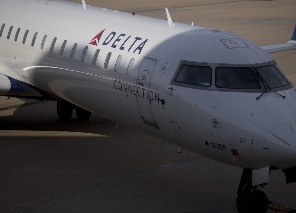 Delta Air Says No More Support Kittens, Puppies on Flights