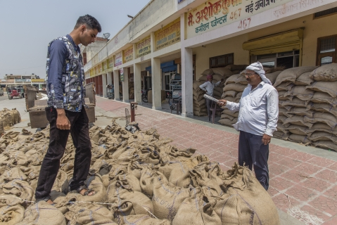 A farmer counts sacks of wheat at the New Grain Market in Karnal, Haryana, India, on May 19, 2016. (Photographer: Prashanth Vishwanathan/Bloomberg)