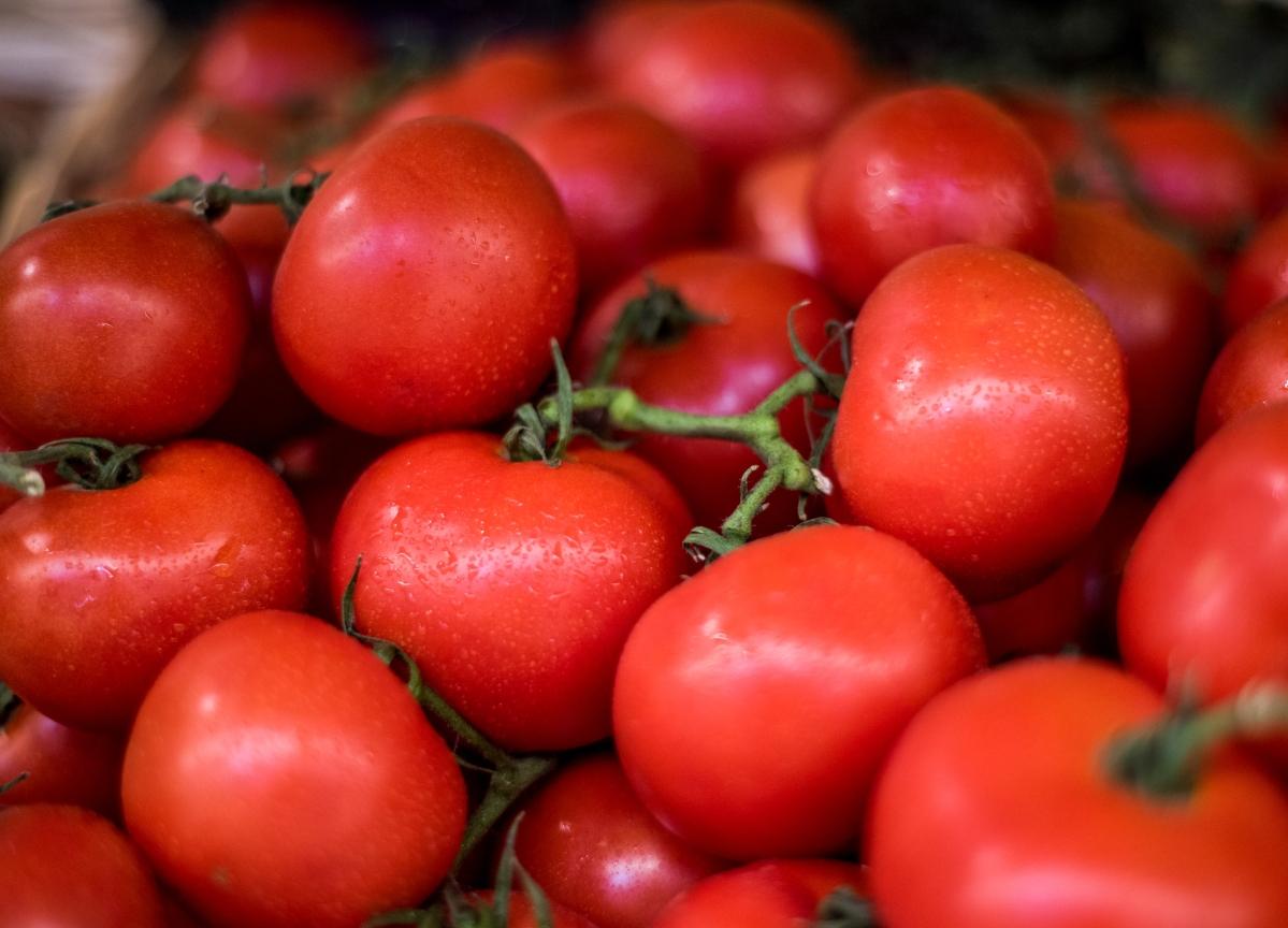 Mexico Says U.S. Tomato Inspection Demand Preventing New Accord