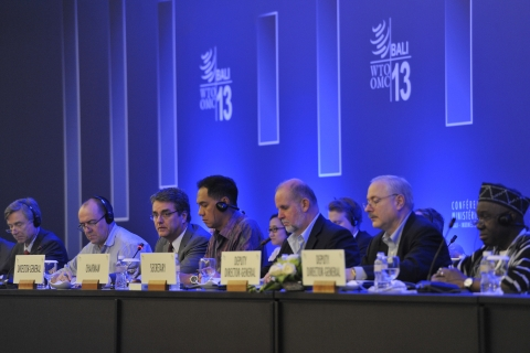 "Day 4 of the WTO""s Ministerial Conference, Bali, on December 3, 2013. (Photograph: WTO)"