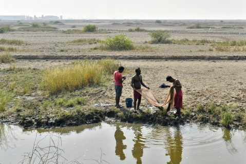 Men use a fishing net near the village of Dholera, Gujarat, India, on Wednesday, November 22, 2017. (Photographer: Anindito Mukherjee/Bloomberg)